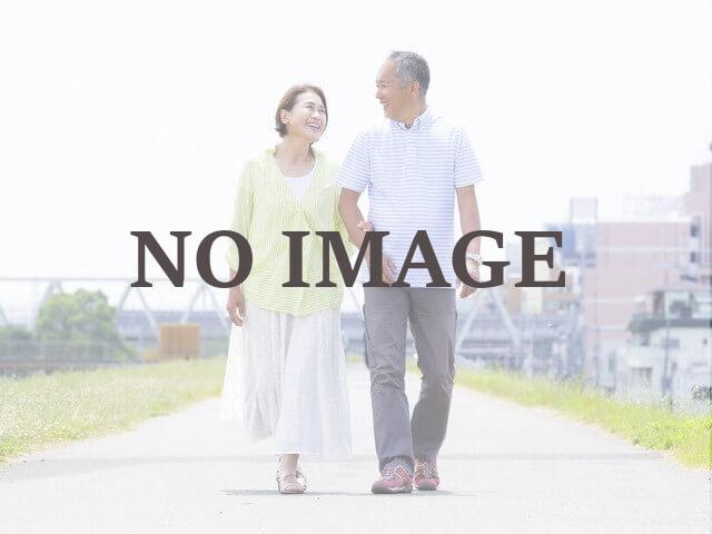 NOIMAGE画像